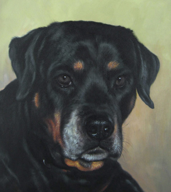 Pet Oil Painting Gallery